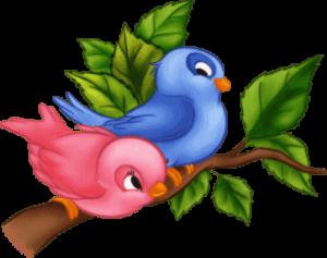 Загадки про птиц