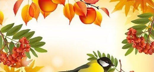 Круглый год (осень)