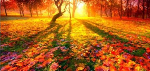 Короткие стихи Тютчева про осень