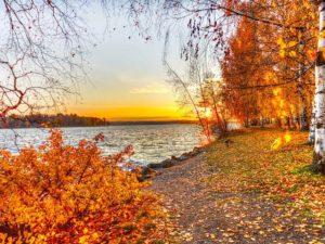 А плещеев осень наступила